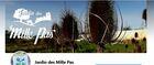jardinpedagogiqueenagroecologiedesmille_mille-pas.jpg